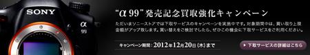 20121010_005.jpg